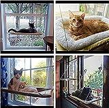 Mmbox lettino da finestra per gatti, comodo.