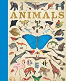 Animals - Best Reviews Guide