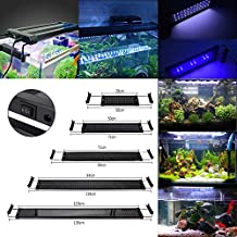 GreenSun Lámpara de Acuario Luces para Acuarios y estanques Se aplica a 28.5 cm 6W 30 LED Blanco y 6 LED Azul con Enchufe EU