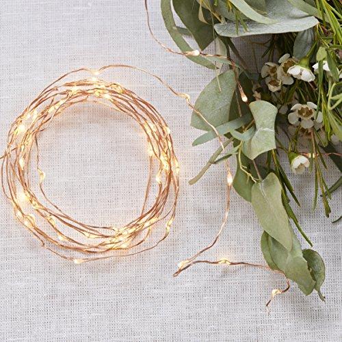ginger-ray-60-rose-gold-led-string-lights-battery-operated-beautiful-botanics