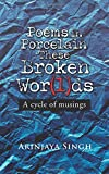 Poems in Porcelain These Broken Wor(l) DS: A Cycle of Musings