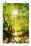 Eau Zone Bilder - Landschaft Natur – Waldbach in der Sonne- Leinwand Kunstdrucke Wandbilder aus Deutschland