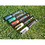 Queen bee marker pen set (5 pens) 16
