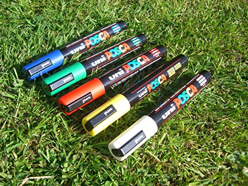 Queen bee marker pen set (5 pens) 8