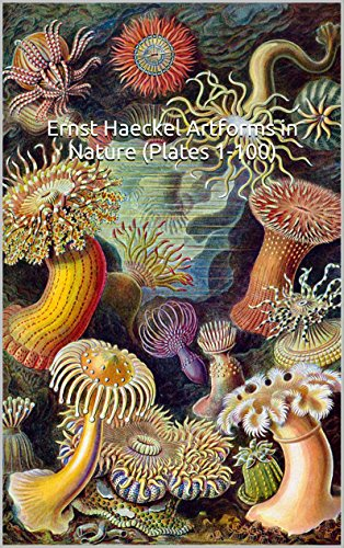 ernst-haeckel-art-forms-in-nature-plates-1-100-the-world-of-art-100-all-original-color-plates-englis