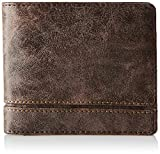 Baggit Brown Men's Wallet (2060902)
