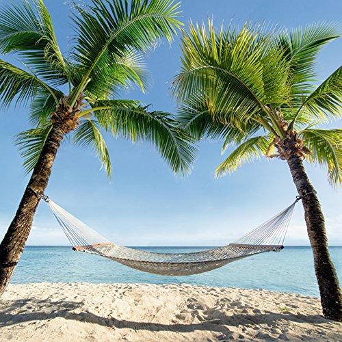 Artland Qualitätsbilder   Glasbilder Deko Glas Bilder 30 x 30 cm Karibik Palmen Strand Hängematte Landschaft B6VD