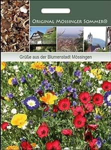 Original Mössinger Sommer für 25m2