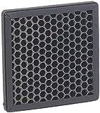 newgen medicals Zubehör zu Luft-Ionisierer: Aktivkohle-Wabenfilter für 5-Stufen-Luftreiniger LR-500, 17 x 17 cm (Raumklimaverbesserer)