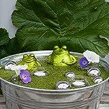 Gartenzaubereien Miniteich mit Schwimmfrosch und silbernen Kugeln