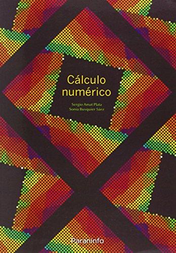 Cálculo numérico (Matematicas (paraninfo)) por SERGIO AMAT PLATA