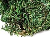 maDDma ® Natürliches Deko Moos, 780g, Dunkelgrün