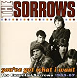 Songtexte von The Sorrows - You've Got What I Want: The Essential Sorrows 1965-67