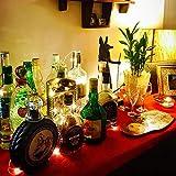 12 Stück LED Flaschenlicht, BIG HOUSE 20 LEDs 2M Lichterkette Kupferdraht batteriebetriebene Weinflasche Lichter mit Kork Schnurlicht für DIY Deko Weihnachten Party Urlaub Stimmungslichter (Warmweiß) - 7