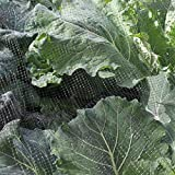Butterfly Protection Netting Insect Garden Netting 2 x 10m - More sizes available