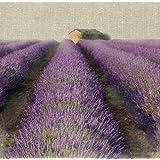 "Van Eyck Canvas Wall Art Work Oil Painting Violet Lavender 16"" x 16"" Inches yapurple2"