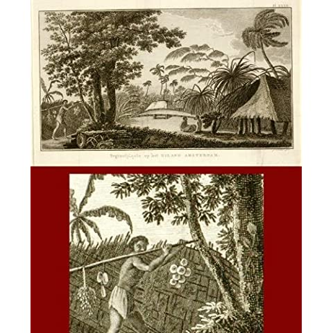 theprintscollector antico Print- Isola amsterdam-east indies-cook (Amsterdam Isola)