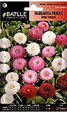 Semillas de Flores - Margarita Prados Doble Variada - Batlle