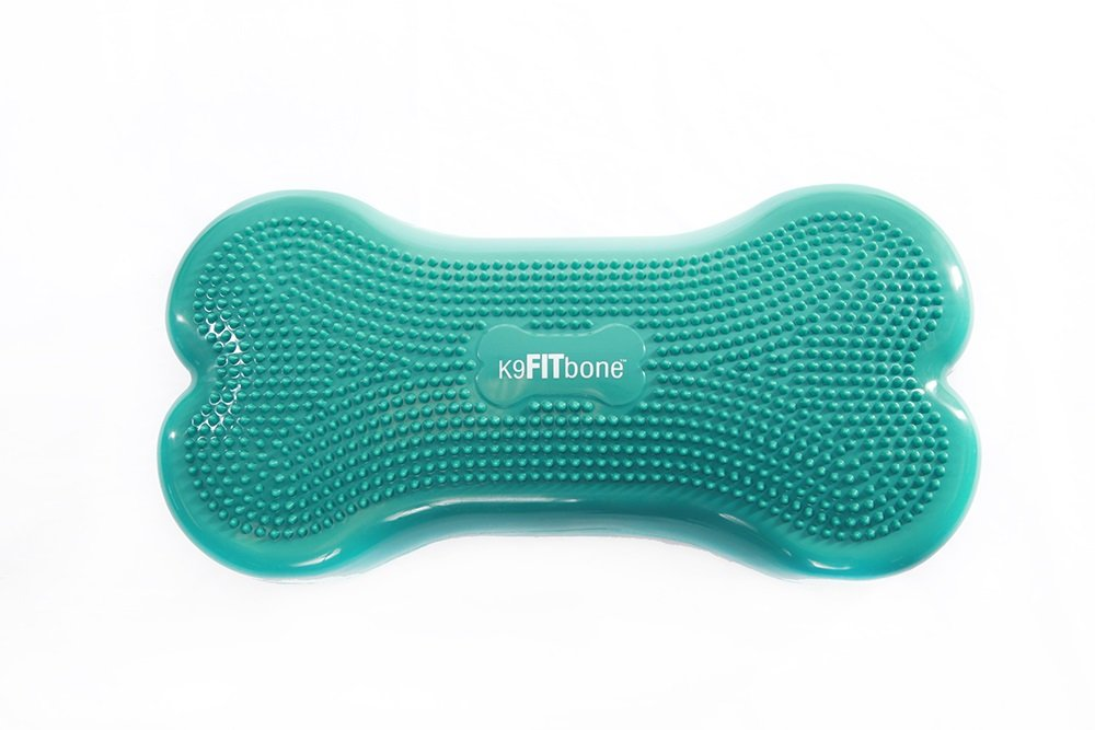 FitPaws K9FITbone Accessories Education for dogs, Aqua Blue