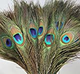 CrazyGadget® 10 x Peacock Tail Feather Natural Real 10-12 Inch 25-30cm Bouquet Craft Arts Design Decor Interior Design