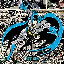 Batman Estampado en lienzo &laquo Burst» de DC Comics, multicolor, 40 x 40cm
