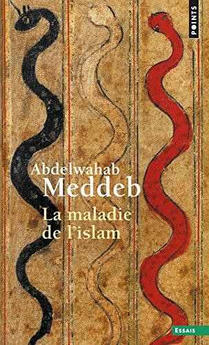 La Maladie de l'islam par Abdelwahab Meddeb