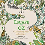 Escape to Oz: A Colouring Book Adventure by Good Wives and Warriors (2016-09-01)
