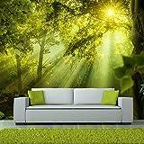murando - Fototapete Wald 250x175 cm - Vlies Tapete - Moderne Wanddeko - Design Tapete - Wandtapete - Wand Dekoration - Natur Landschaft c-A-0077-a-a