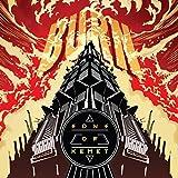 Burn [Vinyl LP]