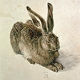 Artland Qualitätsbilder I Bild auf Leinwand Leinwandbilder Wandbilder 80 x 80 cm Tiere Wildtiere Hase Malerei Braun B1NM Junger Feldhase 1502