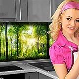 Küchenrückwand < Waldlichtung > Premium Hart-PVC 0,4 mm selbstklebend 400x80cm