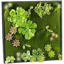Carlo Milano Pflanzen Deko: Vertikaler Wandgarten Ken mit Deko-Ranken, 60 x 60 cm (Wandbepflanzungen)