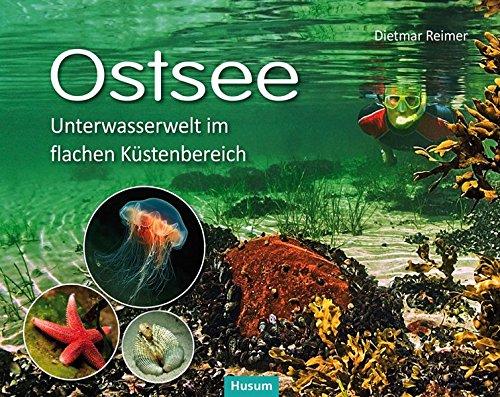 Ostsee: Unterwasserwelt im flachen Küstenbereich Kattegatt - Kleiner Belt - Westliche Ostsee -