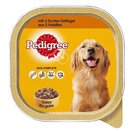 pedigree-hundefutter-3-sorten-geflugel-10-schalen-10-x-300-g