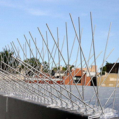 stainless-steel-bird-spikes-durable-pigeon-repellent-great-deterrent-for-birds-crows-and-woodpeckers