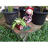 The Garden Store Ant Doll Planter Medium