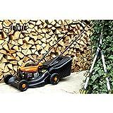 FUXTEC Benzin Rasenmäher FX-RM1630 mit 40 cm und massivem Fangkorb 5-fache Höhenverstellung besonders leicht und wendig -