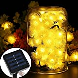 Outdoor Solar Lights Dandelion Ball Solar Power Waterproof Lights for Outside Garden Camping Patio Party Christmas (Warm White)
