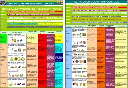 food vitamin and mineral chart: Vitamins minerals holistic health chart available in a4 and a3