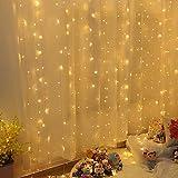 Guirlande Lumineuse Rideau 300 LED Rideau Lumineux 3M*3M 8 Modes d'Eclairage Etanche IP44 Exterieur et Interieur, Decoration