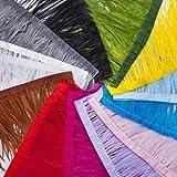 Elastic Stretch Metallic Pailletten trimmen, 2Reihen, 3/10,2cm für Handwerk, Kostüm, Tanz, Hochzeit & Brautschmuck. umwerfenden Farbe Auswahl für Nähen & Dekoration. Neotrims groß- oder Einzelhandel