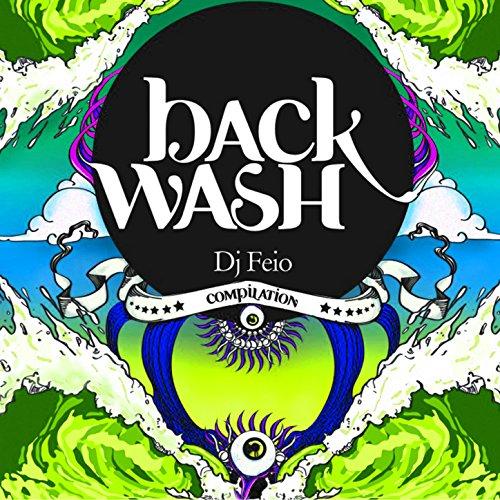 Backwash System (Majestic)