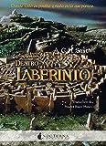 Dentro Del Laberinto (Literatura Mágica)