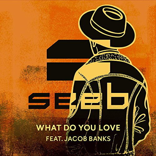 What Do You Love [feat. Jacob ...