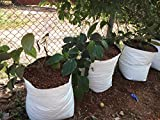 #9: Rochfern Grow Bag, SUPER LARGE,100% Virgin Polyethylene, (60 x 36 x 24 Cms.)(Pack of 8 Grow bags) Portable .UV treated for longer outdoor life, perfect for Terrace, Balcony, Kitchen garden, Flats, Good looking White Outside ,Black Inside