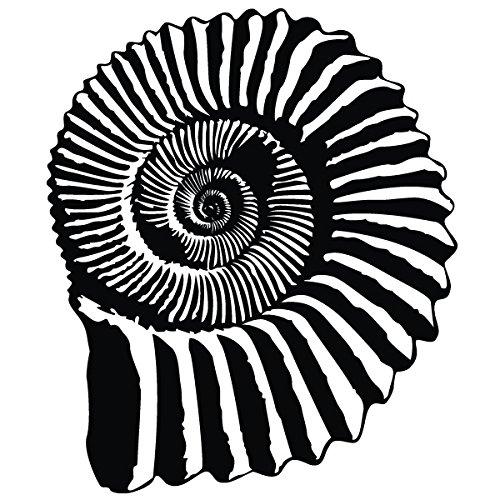 Wadeco Ammonit Fossil Wandtattoo Wandsticker Wandaufkleber 35 Farben verschiedene Größen, 96cm x 116cm, türkis