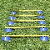 Mini-Hürden, 5er Set, mit blauen Markiermulden und Stangen 100 cm, für Agility - Hundetraining (gelb)