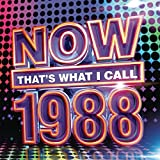 Now That's What I Call 1988 [Clean]