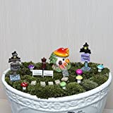 Secretrain 38Pcs Miniature Fairy Garden Ornament DIY Dollhouse Kit (Red)