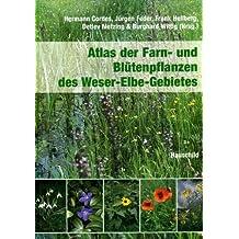 Atlas der Farn- und Blütenpflanzen des Weser-Elbe-Gebietes
